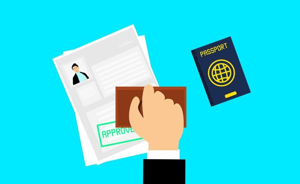 Some Information Regarding e-visa